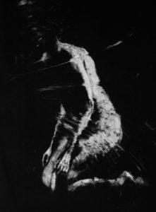 Monotype, Clara Lieu